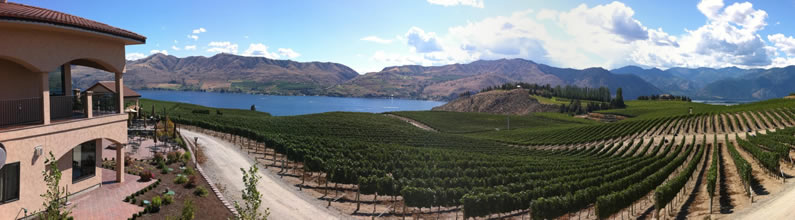 Benson Vineyards